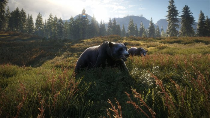 detail theHunter: Call of the Wild - 2019 Edition - PC