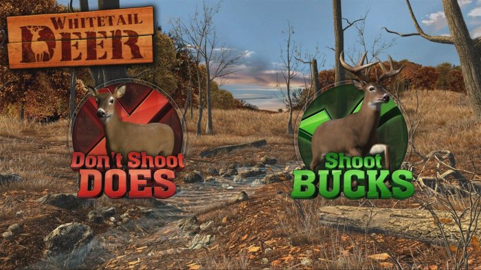 detail Big Buck Hunter Arcade - Switch